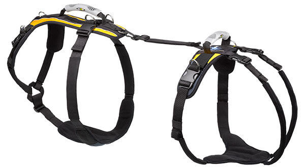 X-Large Harness